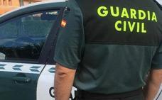 Dos jóvenes detenidos por un presunto robo con fuerza de electrodomésticos en un polígono industrial