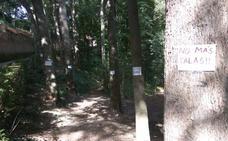 Polémica por una tala de árboles por seguridad en el entorno de la Alhambra
