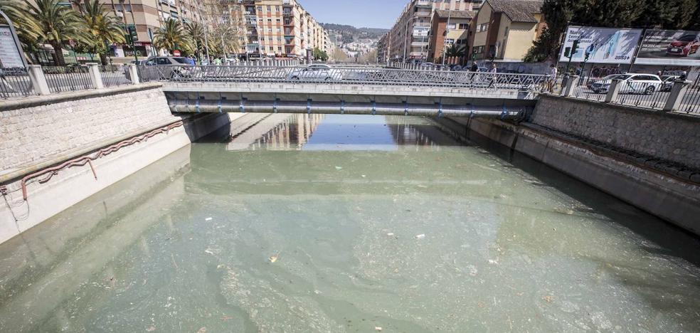 Así quieren convertir los ecologistas el río Genil en el nuevo Manzanares