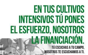 Unicaja Banco lanza una nueva campaña de financiación de cultivos intensivos con 426 millones