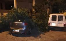 Una rama destroza a un coche en la Zona Norte