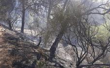 Extinguido el incendio en La Taha