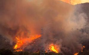 El incendio forestal en Estepona ha calcinado ya 290 hectáreas