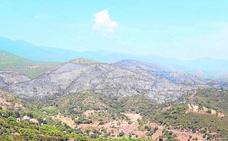 Infoca da por estabilizado el incendio de Estepona, que ha calcinado unas 300 hectáreas