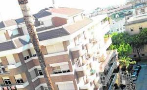 El Ayuntamiento usa trampas y feromonas sexuales para salvar las clásicas palmeras de la ciudad, habiéndose arrancado ya una veintena