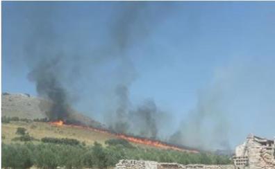 Denunciado un hombre como presunto autor de un incendio forestal en Alamedilla (Granada)