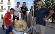 Alhendín celebra la XII Feria de Productos Agrícolas y Artesanales
