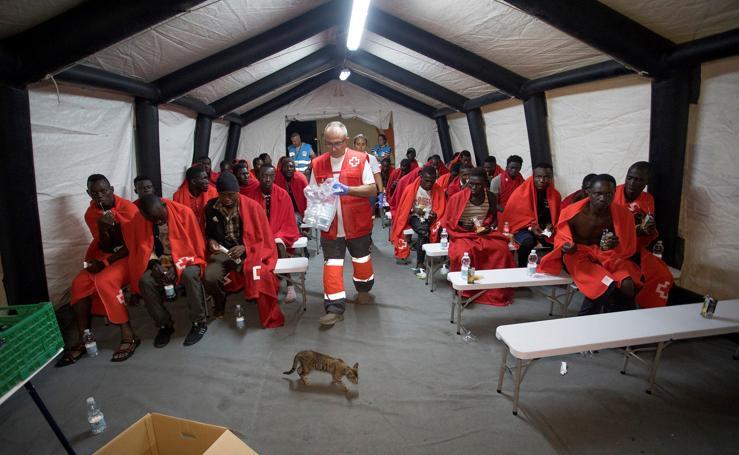 Llegan a Motril los 63 inmigrantes rescatados de una partera este domingo