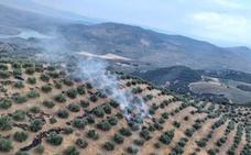 Declarado un incendio agrícola en Colomera