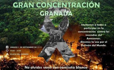 Bolivianos residentes en Granada convocan una concentración «por la Amazonia»