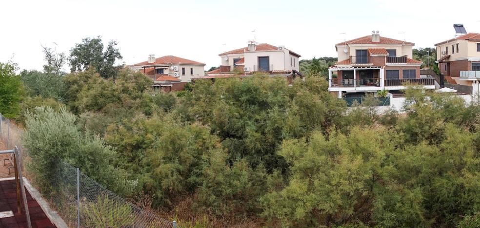 Las ramblas de la provincia de Granada se enfrentan a medio limpiar a las primeras tormentas