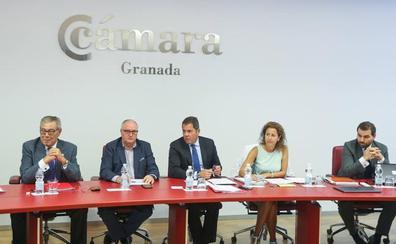 «Granada necesita fijar una estrategia de futuro y ahí va a ayudar la Cámara»