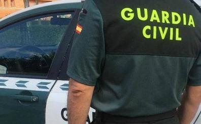 Localizadas 637 plantas de marihuana y detenidas dos personas en Granada