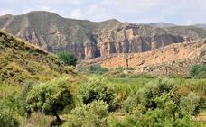 Ruta por el Valle del río Guardal: un paseo entre cuevas trogloditas, barrancos y cañadas