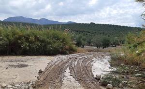 La Aemet declara la alerta en Jaén por lluvia y fuertes vientos