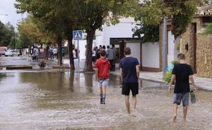 Granada vuelve a la normalidad tras la tormenta