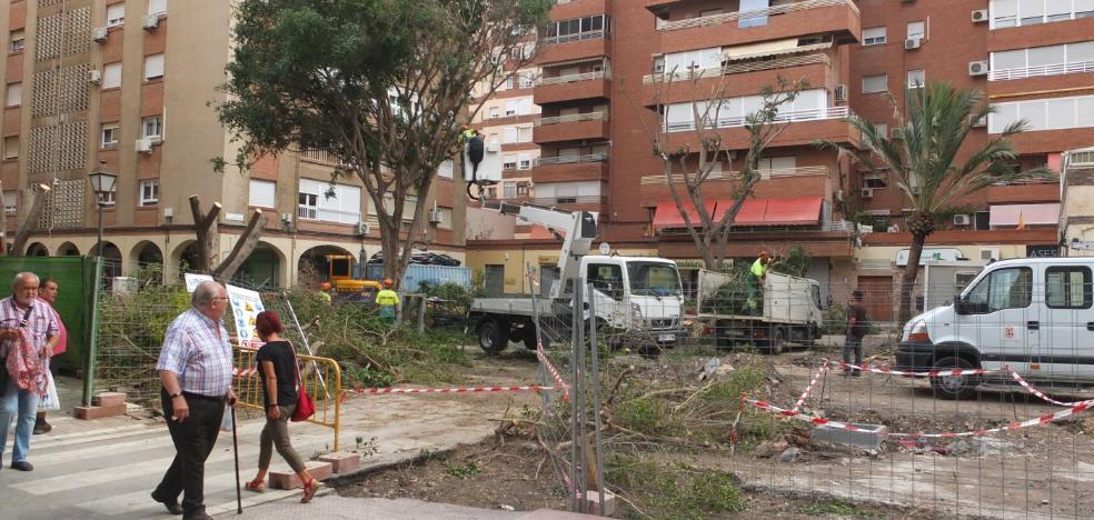 ¿Qué está pasando con los árboles de la calle Artés de Arcos?