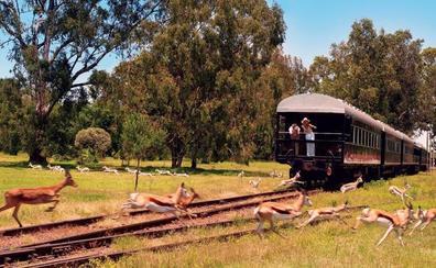 Así es el primer tren de lujo que atraviesa África