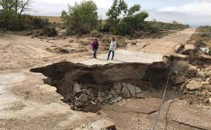 La Junta cifra en 400 hectáreas las afectadas por el temporal en la provincia de Granada