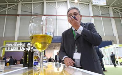 Los aceites 'Jaén Selección' llegan al mercado francés de manos de la Diputación
