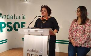 El PSOE advierte del «caos» que ha supuesto el arranque del curso escolar y anuncia iniciativas «para garantizar la normalidad»