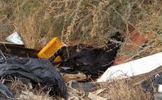 Basura y un caballo muerto, en un punto negro de La Nacla