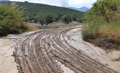 Critican que Jaén se haya quedado fuera de las ayudas del Estado por el temporal