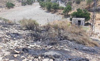 Toman declaración al presunto autor del incendio forestal del pasado julio en Morelábor