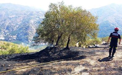 Bomberos de Almuñécar e Infoca sofocan un incendio en el Pago de Gelibra