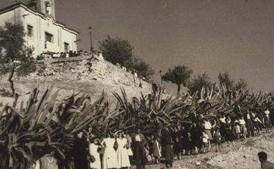 Una historia sobre las fiestas de San Miguel y la ermita del Aceituno