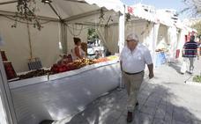 Las cinco noticias de Granada que debes conocer este domingo a mediodía