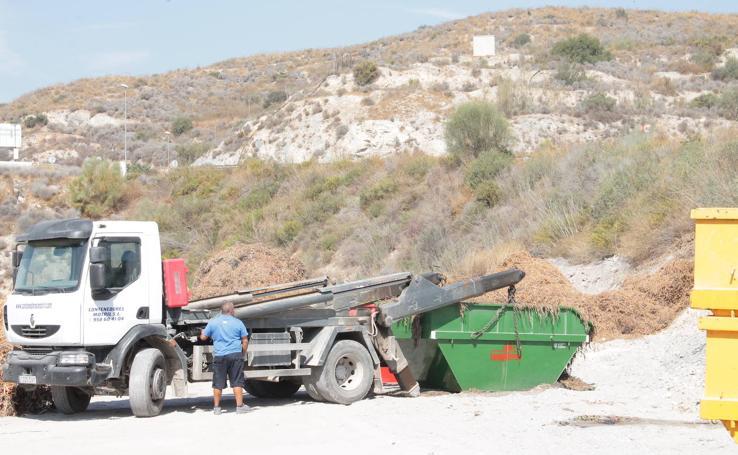 Retiran las toneladas de residuos acumulados frente a la planta de compostaje