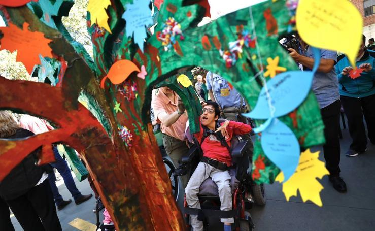 Deseos, sueños y derechos en el Día Mundial de la Parálisis Cerebral