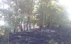 Investigan a una persona por un incendio forestal en Purullena