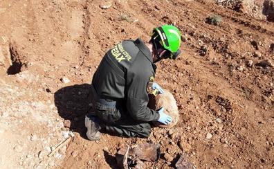 Desactivan en Lopera una bomba con 35 kilos de TNT, usada en la Guerra Civil