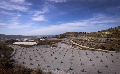 La reforma del PGOU permite a los agricultores de Motril cultivar a 400 metros de altura