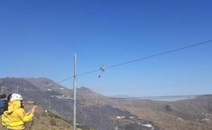Extinguido el incendio entre Almuñécar e Ítrabo