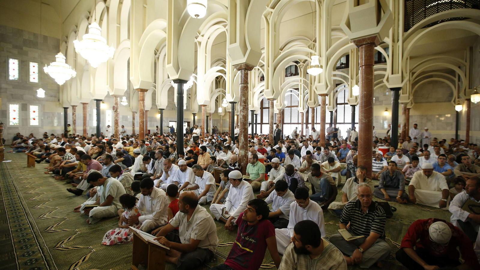 Científicas demuestran que una breve intervención psicológica reduce la hostilidad hacia los musulmanes