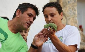 Los agricultores de Almuñécar ayudan a censar camaleones mientras recogen sus cosechas