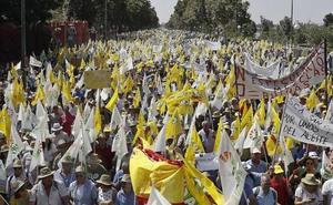 Un centenar de autobuses partirán desde Jaén para clamar en Madrid por los precios del aceite