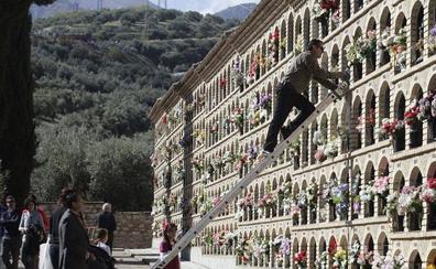 Los nuevos nichos llegarán al cementerio con el tiempo justo