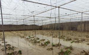 El Gobierno destina 970.000 euros a recuperar playas tras la DANA