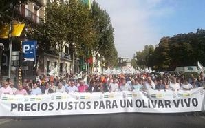 Miles de olivareros toman las calles de Madrid por los bajos precios del aceite