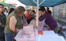 Las mejores imágenes de la Feria de San Lucas en el centro de Jaén