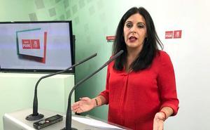 Férriz (PSOE): «Los presupuestos son un monumental timo para la provincia»
