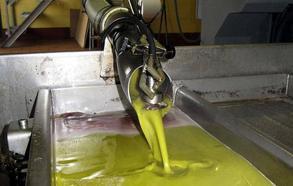 El aceite de oliva sigue bajando, ajeno a las protestas del sector: ni a dos euros el kilo ya