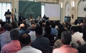 La Junta pide a los ayuntamientos que sean sus «aliados» para regularizar 25.000 viviendas en Granada