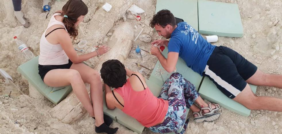 El mapa con todos los hallazgos arqueológicos de Granada, un viaje de 1,4 millones de años