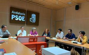 Entrena opina que hay «sobradas razones para que se produzca una gran movilización en la provincia que favorezca una contundente victoria del PSOE»