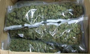 Detenida en Granada por mandar por paquetería urgente 600 kilos de marihuana a Holanda